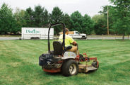 Mowing, Tree, Shrub & Lawn Care